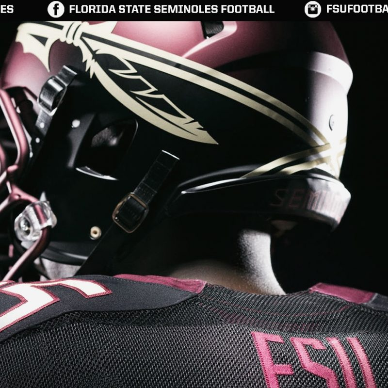 10 Top Florida State Seminoles Wallpaper FULL HD 1080p For PC Background 2018 free download florida state seminoles football wallpaper free download images 1 800x800