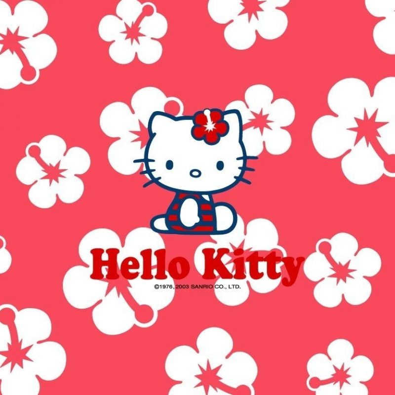 10 Most Popular Hello Kitty Wallpaper For Free FULL HD 1080p For PC Desktop 2018 free download flower blossoming interesting white colours in middle beautifull 800x800