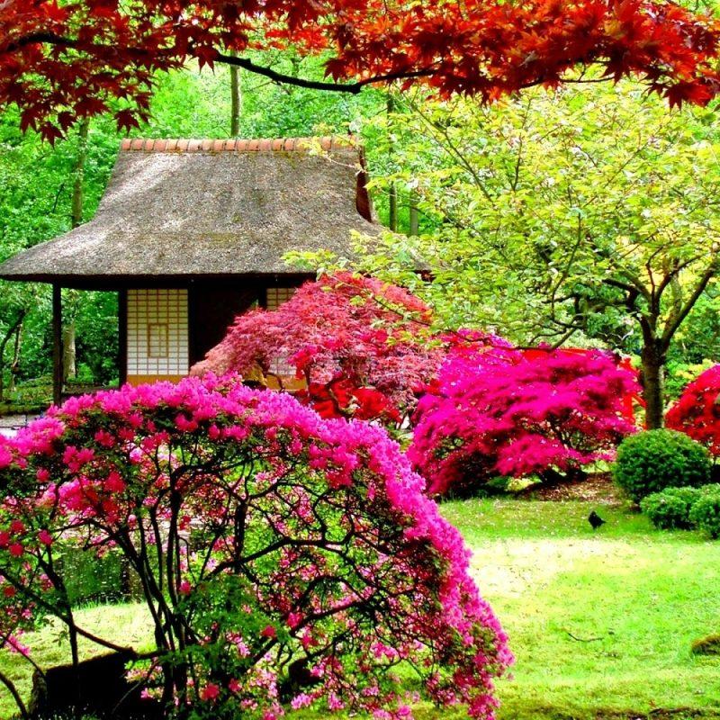 10 Top Free Flower Garden Wallpapers FULL HD 1920×1080 For PC Desktop 2021 free download flower garden wallpaper free downloadhttp refreshrose blogspot 800x800