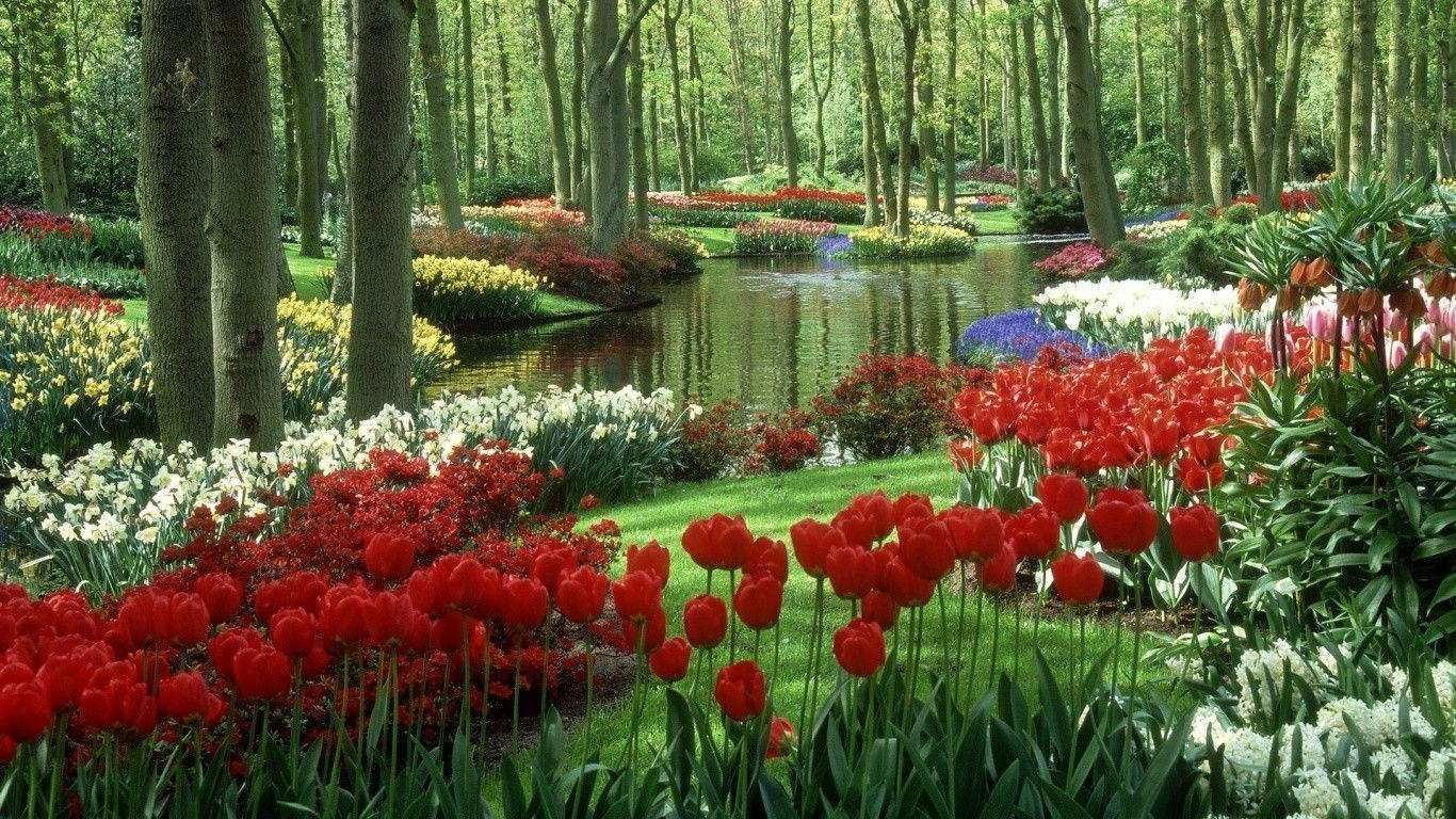 flower garden wallpapers - wallpaper cave