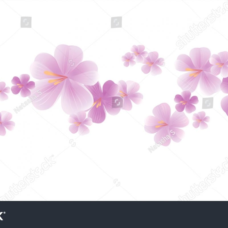 10 Most Popular Light Purple Flower Background FULL HD 1920×1080 For PC Desktop 2018 free download flowers design flowers background flying light stock vector 800x800