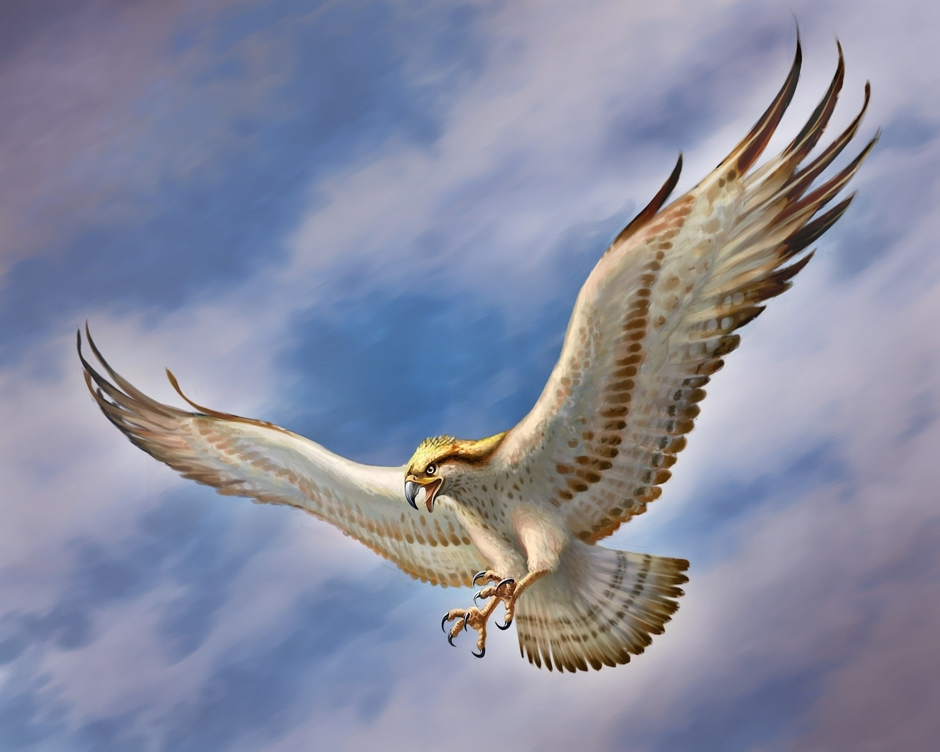 flying eagle wallpapers, best flying eagle wallpapers in high