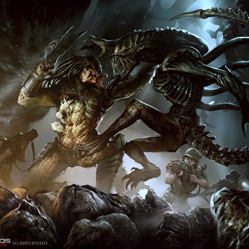 10 New Alien Vs Predator Wallpaper FULL HD 1080p For PC Background 2018 free download fonds decran aliens vs predator bataille jeux fantasy telecharger 800x800