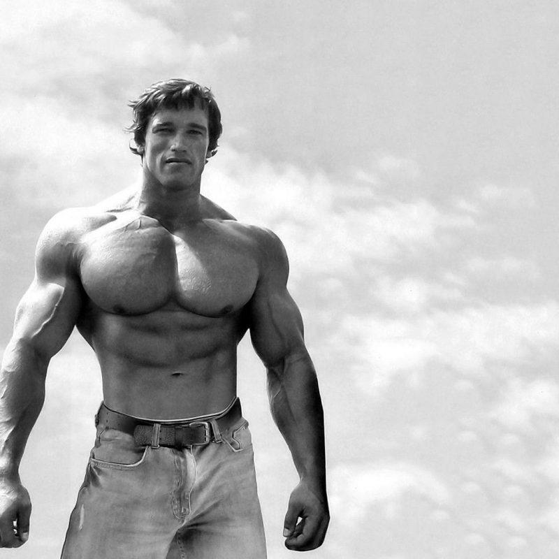 10 New Arnold Schwarzenegger Wallpaper 1920X1080 FULL HD 1920×1080 For PC Background 2018 free download fonds decran arnold schwarzenegger tous les wallpapers arnold 800x800