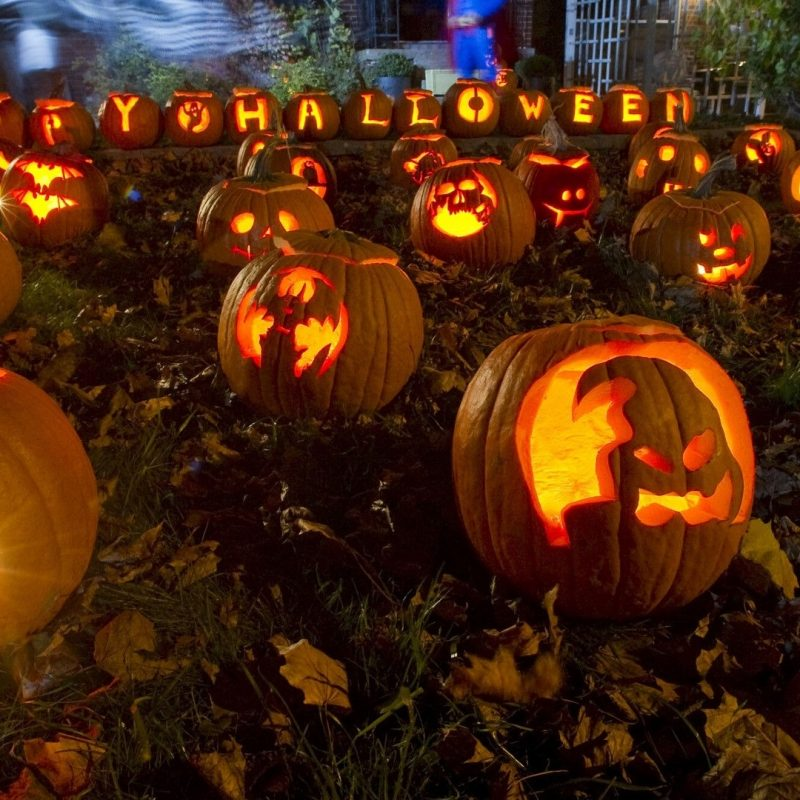 10 Best Halloween Hd Wallpapers 1920X1080 FULL HD 1080p For PC Desktop 2020 free download fonds decran halloween maximumwallhd 800x800