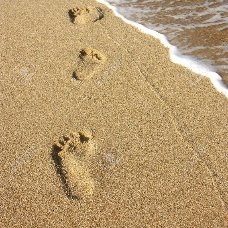 10 Best Footprints In The Sand Images Free FULL HD 1080p For PC Background 2021 free download footprints along the seashore stock photo picture and royalty free 800x800