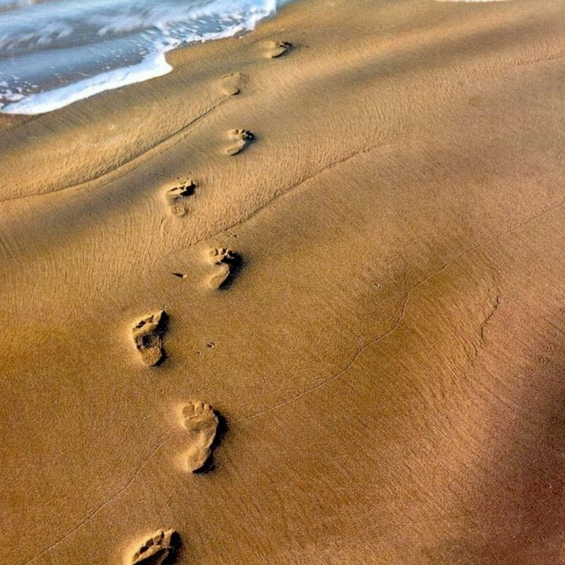 10 New Footprints In The Sand Background FULL HD 1080p For PC Desktop 2020 free download footprints in the sand 1080p hd performedstephen meara blount 2 800x800