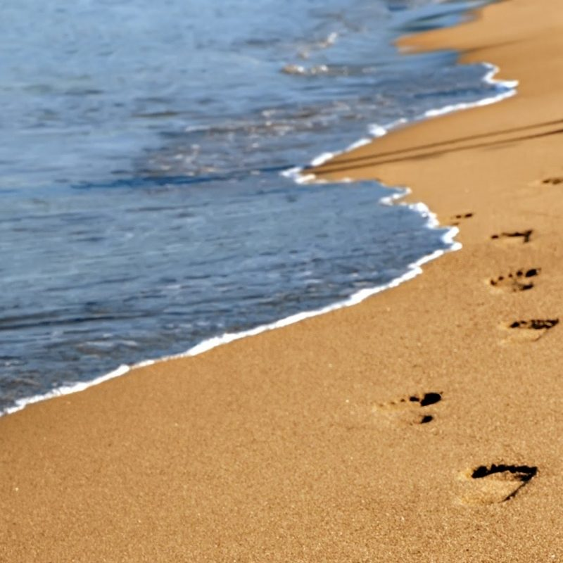 10 Best Footprints In The Sand Images Free FULL HD 1080p For PC Background 2021 free download footprints in the sand leona lewis piano cover youtube 2 800x800