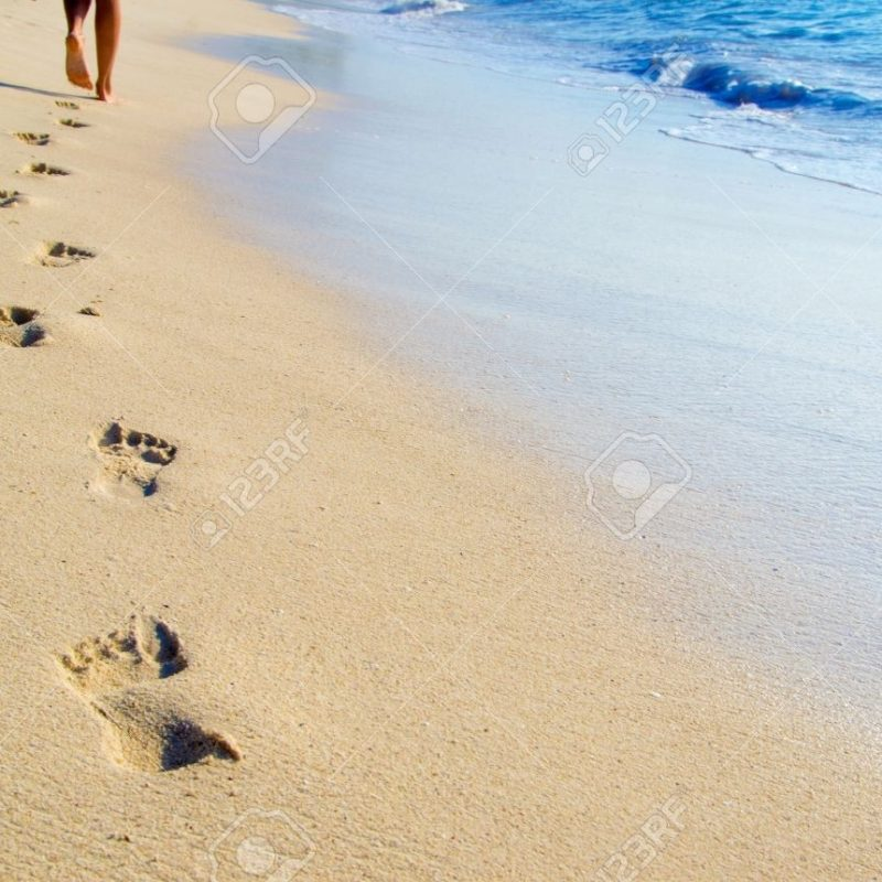 10 Best Footprints In The Sand Images Free FULL HD 1080p For PC Background 2018 free download footprints in the sand stock photos royalty free footprints in the 800x800