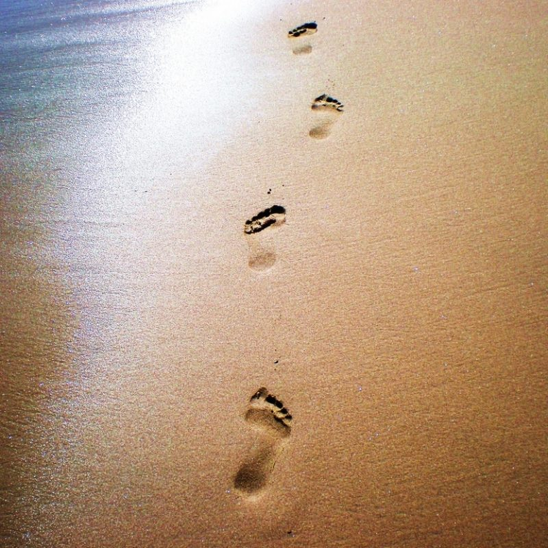 10 Top Footprints In The Sand Pictures FULL HD 1920×1080 For PC Desktop 2020 free download footprints in the sand wallpaper hd 2 ocean beaches pinterest 800x800