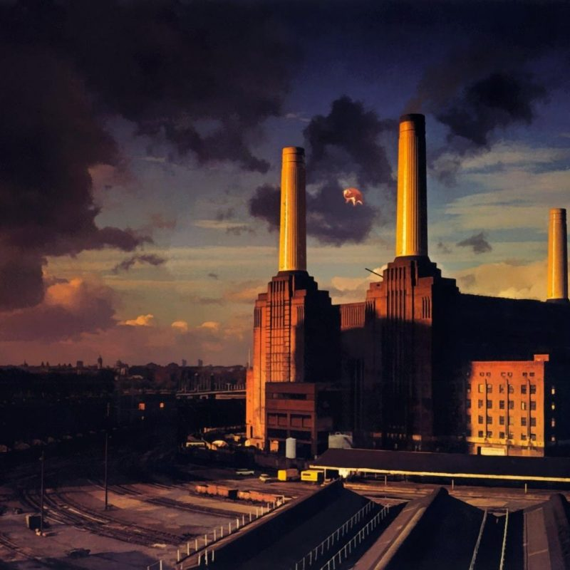 10 Best Pink Floyd Wallpaper 1920X1080 FULL HD 1080p For PC Background 2018 free download for its birthday animalspink floyd 1920x1080 wallpapers 800x800