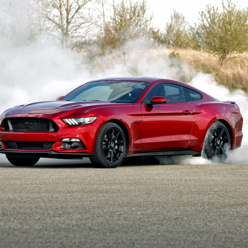 10 Most Popular Ford Mustang Gt Wallpaper FULL HD 1920×1080 For PC Background 2020 free download ford mustang gt wallpapers pictures images 1 800x800