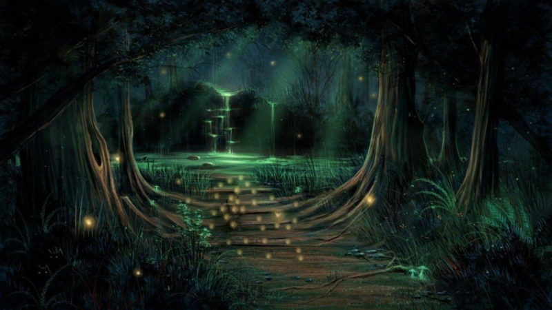 10 Most Popular Dark Enchanted Forest Background FULL HD 1920×1080 For PC Background 2021 free download forest purple nature tree enchanted hd wallpaper free download 800x450