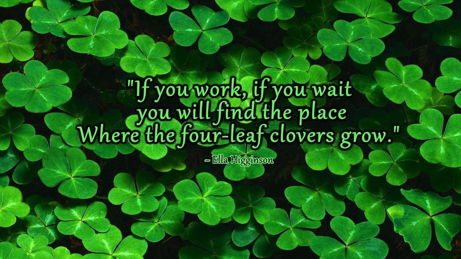 four leaf clover wallpapers - wallpaper cave