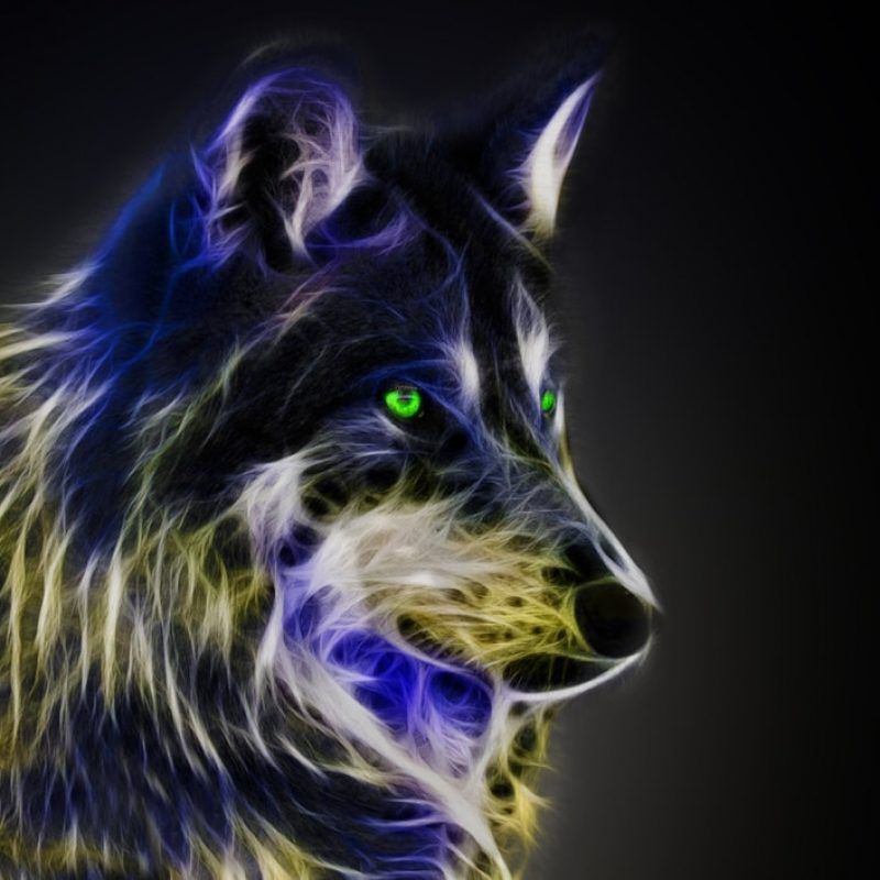 10 Top Pics Of Cool Wolves FULL HD 1920×1080 For PC Desktop 2018 free download fractal wolfmichalius89 on deviantart 800x800