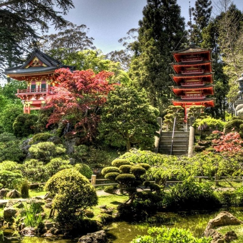 10 Most Popular Japanese Tea Garden Wallpaper FULL HD 1920×1080 For PC Background 2018 free download free 1920x1080 japanese tea garden wallpapers full hd 1080p backgrounds 800x800