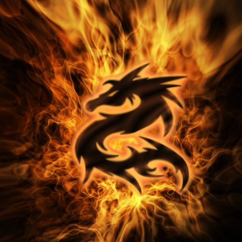 10 Top Fire Dragon Wallpapers 3D FULL HD 1920×1080 For PC Background 2018 free download free 3d desktop wallpaper screensavers fire 3d pictures 800x800
