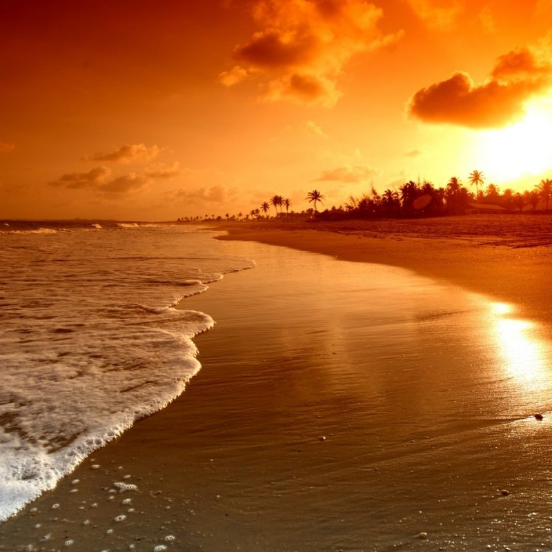 10 Latest Sunset At Beach Wallpaper FULL HD 1080p For PC Background 2020 free download free beach sunset wallpapers desktop long wallpapers 2 800x800
