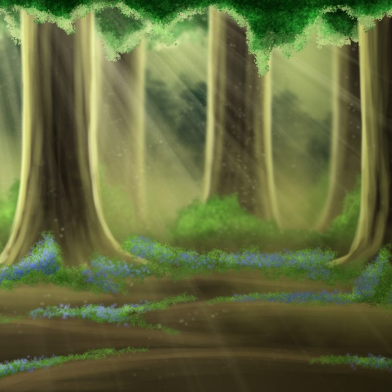 10 New Anime Forest Clearing Background FULL HD 1080p For PC Background 2020 free download free bluebell forest backgroundsweetlittlevampire on deviantart 800x800