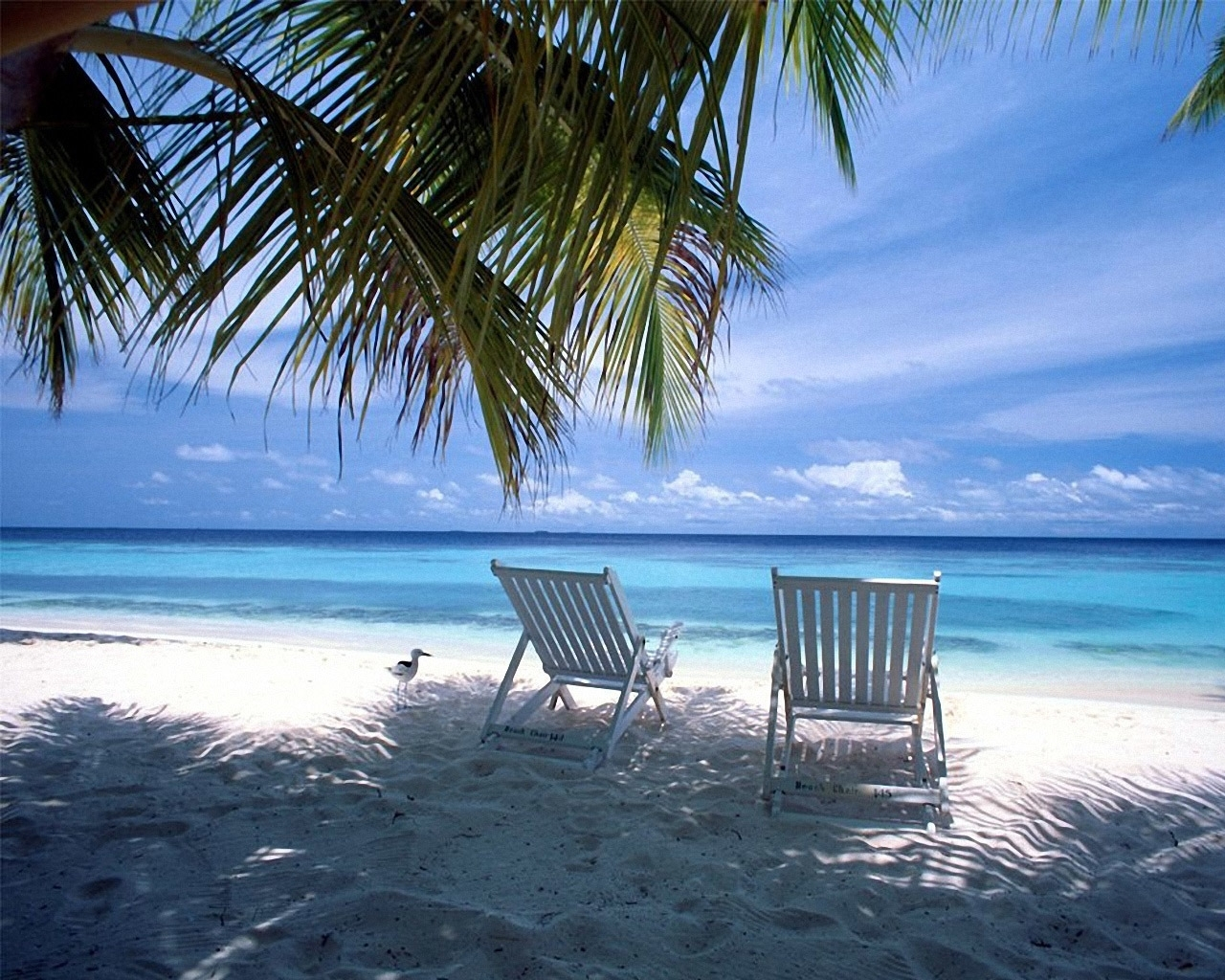 10 new caribbean beach pictures wallpaper full hd 1080p for pc