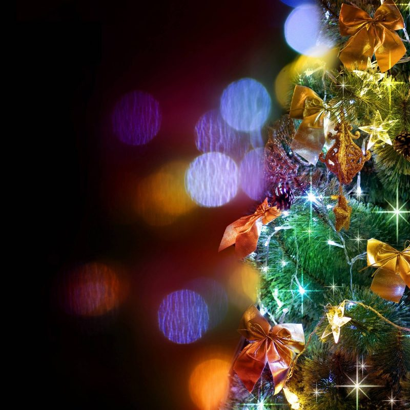 10 New Christmas Tree Wallpaper Hd FULL HD 1080p For PC Background 2021 free download free christmas tree wallpaper for iphone long wallpapers 800x800