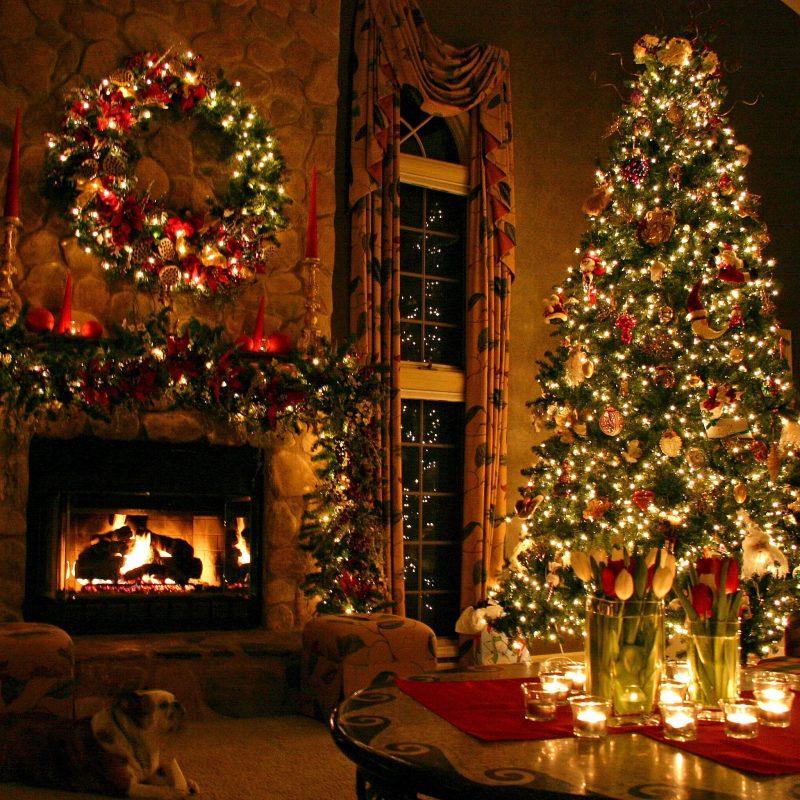 10 Top Christmas Tree Wallpaper Backgrounds FULL HD 1920×1080 For PC Background 2021 free download free christmas tree wallpapers 1080p long wallpapers 1 800x800