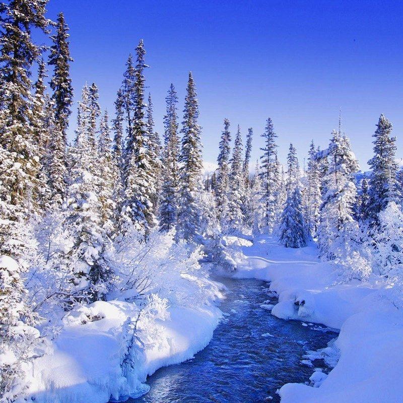 10 Latest Winter Wonderland Backgrounds For Desktop FULL HD 1080p For PC Desktop 2020 free download free desktop wallpapers 40 winter wonderland wallpapers wide 1 800x800