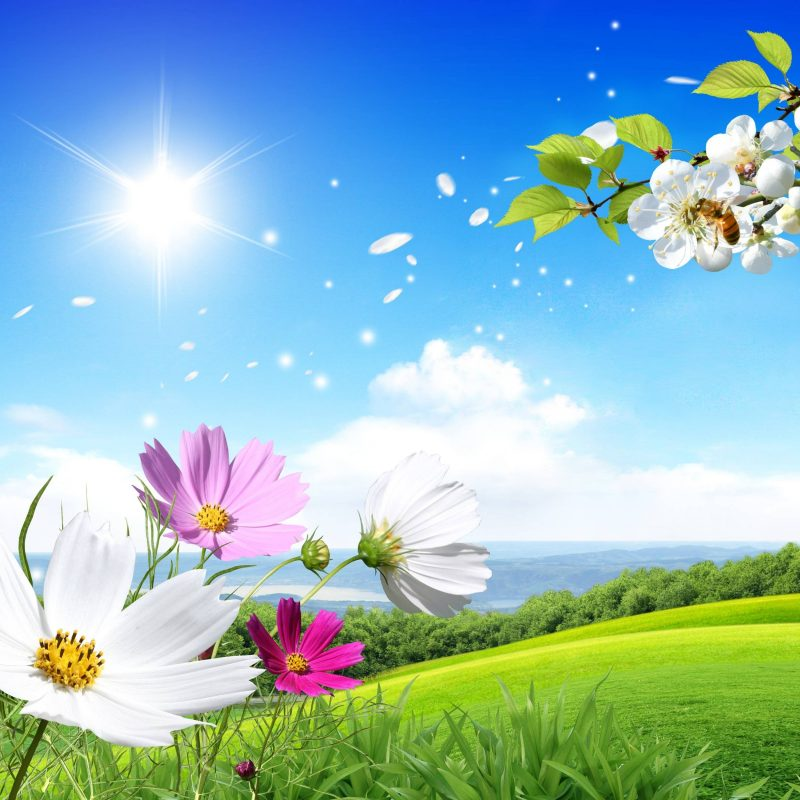 10 Best Spring Scenery Wallpaper Widescreen FULL HD 1080p For PC Background 2021 free download free desktop wallpapers spring scenes wallpaper cave 1 800x800