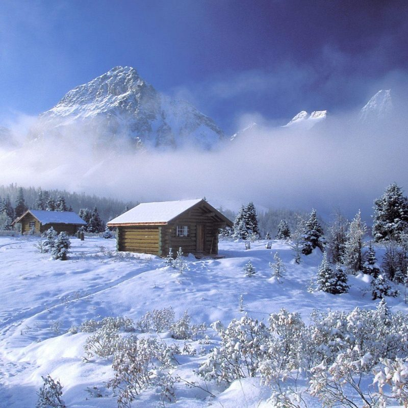 10 New Winter Scenes Wallpapers Free FULL HD 1080p For PC Desktop 2018 free download free desktop wallpapers winter scenes wallpaper cave 3 800x800