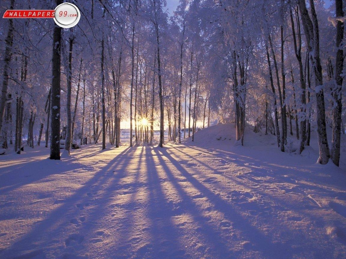 free desktop wallpapers winter scenes - wallpaper cave | images