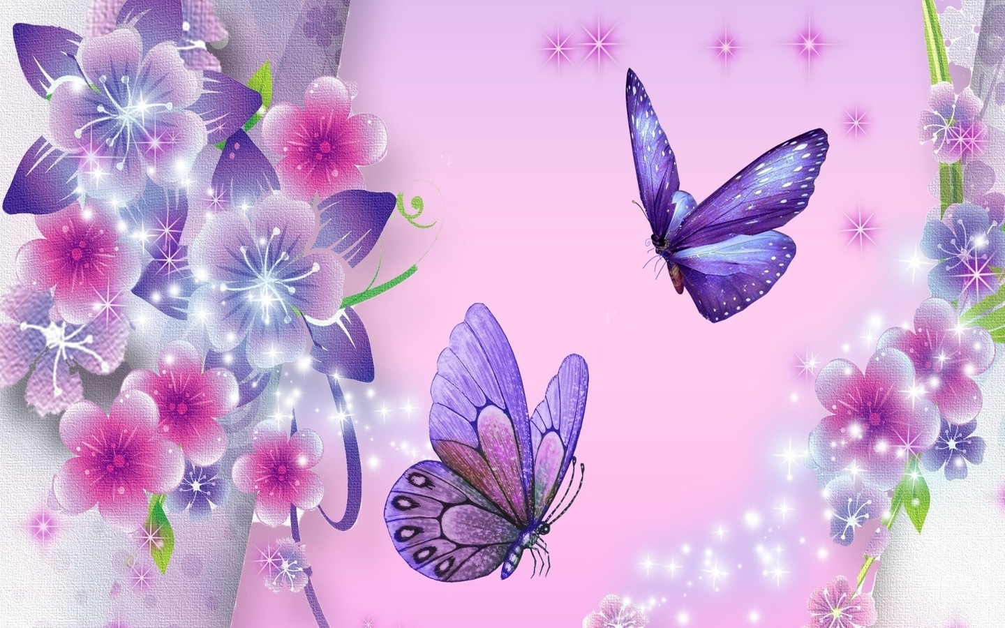 free download butterfly wallpaper - top backgrounds & wallpapers