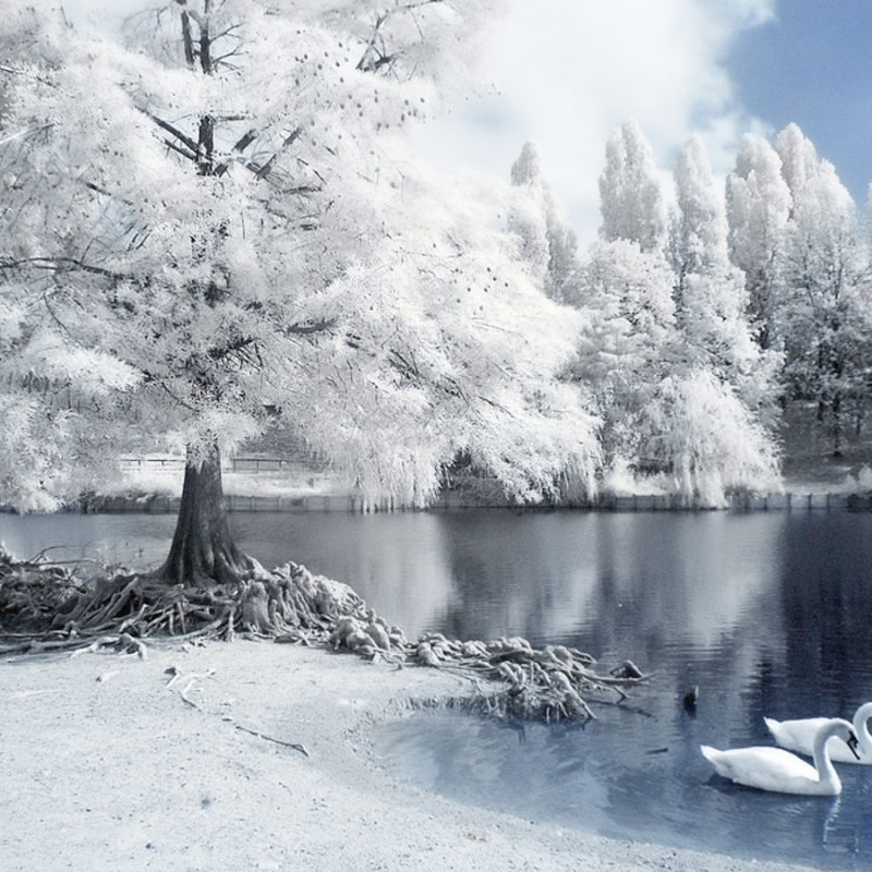 10 New Free Winter Wallpapers And Screensavers FULL HD 1920×1080 For PC Background 2018 free download free download wallpapers for desktop most beautiful places in the 800x800