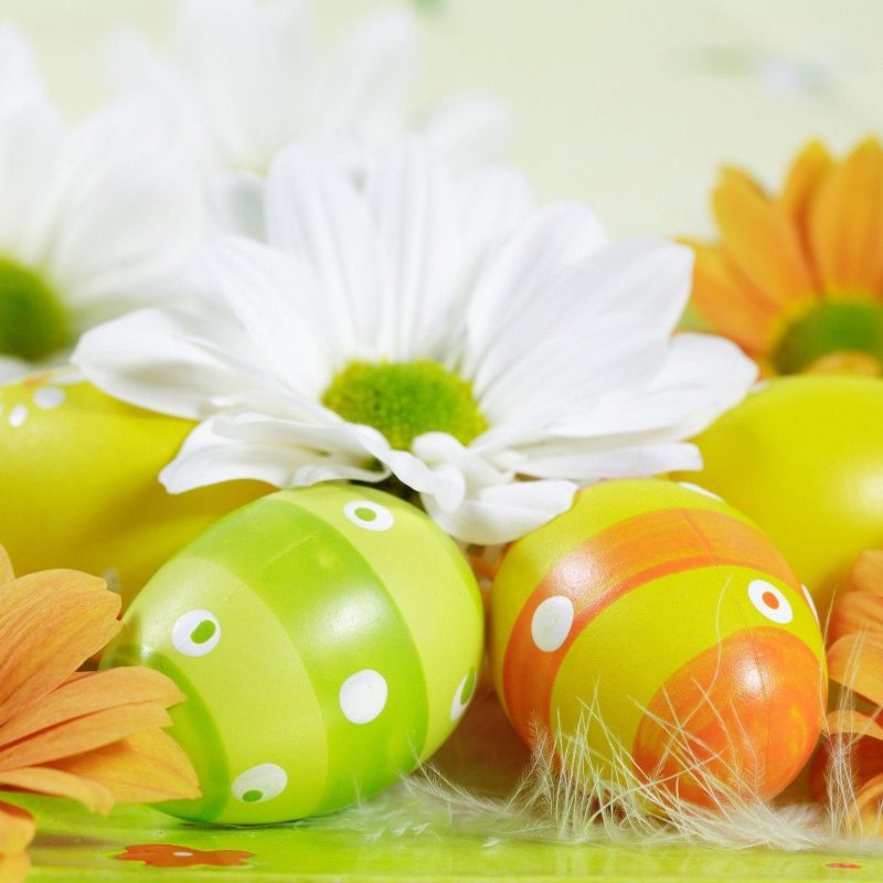 10 Best Free Easter Wallpaper For Desktop FULL HD 1920×1080 For PC Background 2018 free download free easter wallpapers for computer wallpaper cave 2 800x800