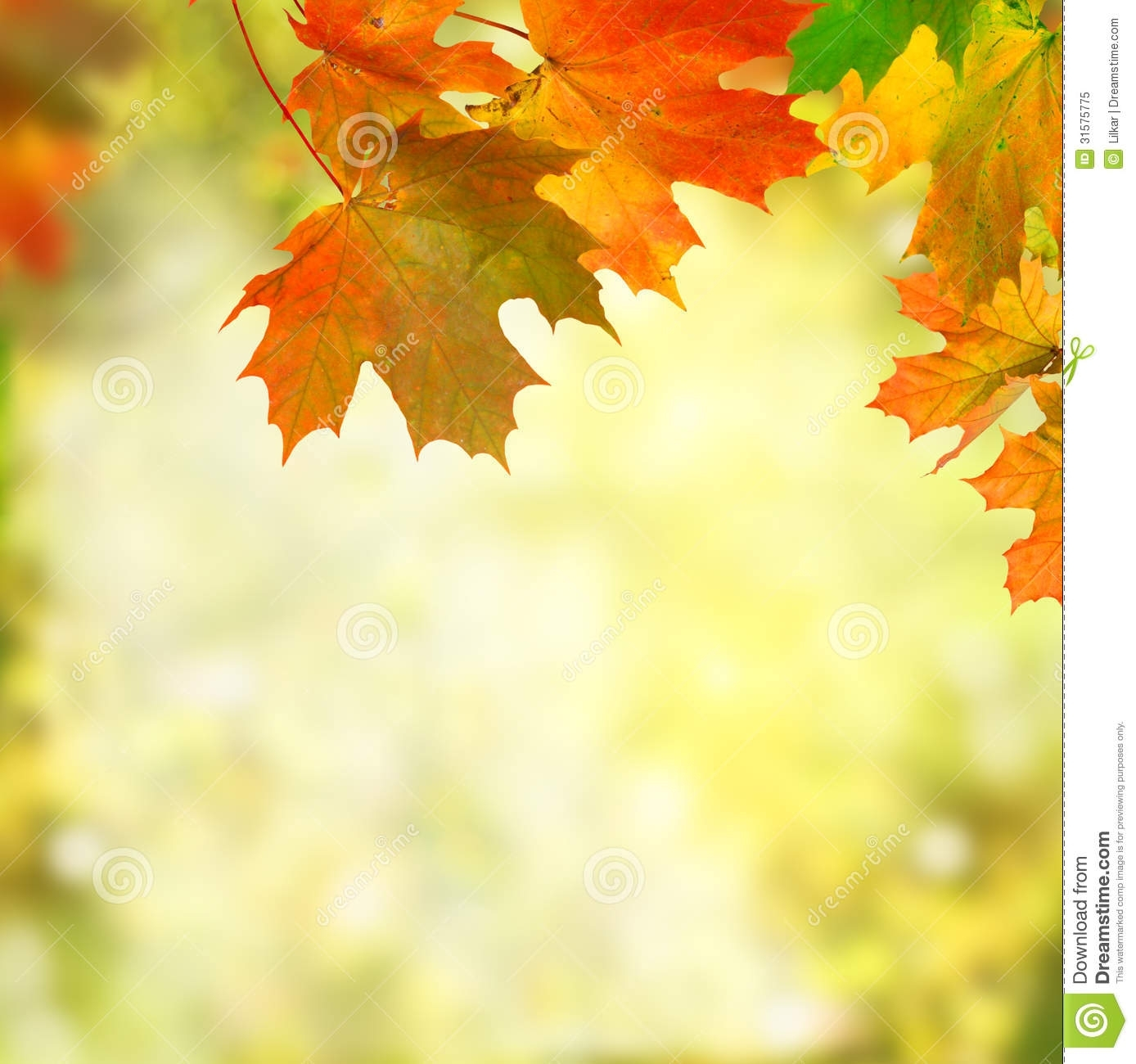 free fall background pictures | http://www.specialswallpaper