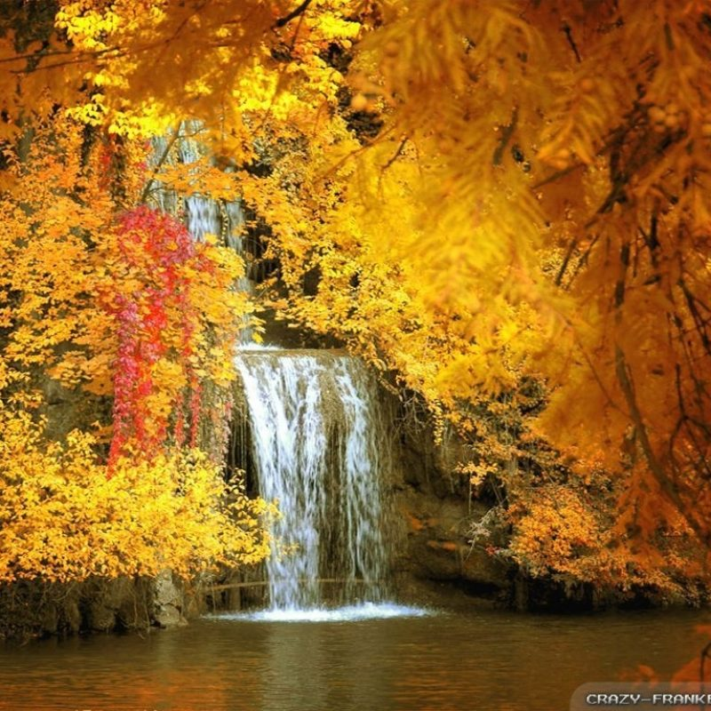 10 Latest Free Wallpaper Fall Scenes FULL HD 1920×1080 For PC Desktop 2021 free download free fall scenes pictures to pin on pinterest pinsdaddy fall 800x800