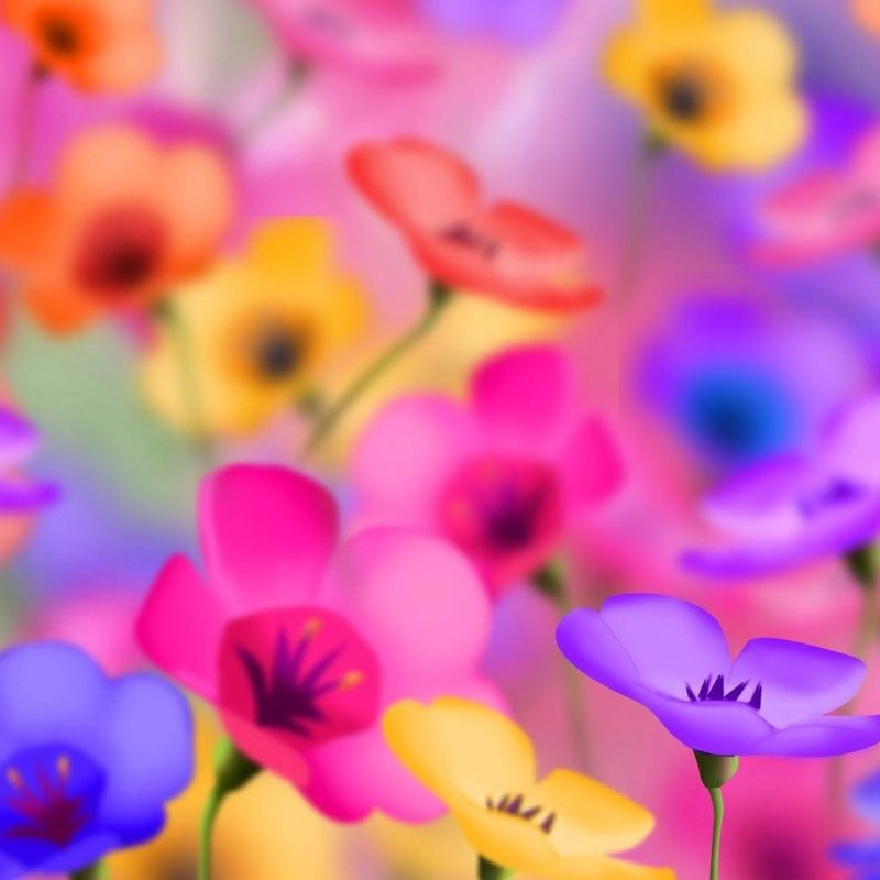 10 Top Desktop Flowers Wallpaper Backgrounds FULL HD 1080p For PC Background 2020 free download free flower wallpaper for desktop high quality backgrounds cave of 800x800