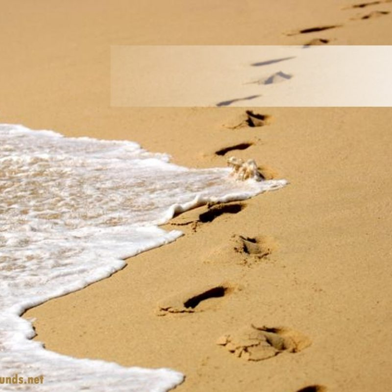 10 New Footprints In The Sand Background FULL HD 1080p For PC Desktop 2020 free download free footprints in the sand backgrounds for powerpoint holiday ppt 800x800