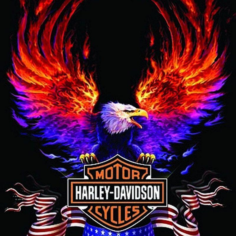 10 Best Harley Davidson Eagle Wallpaper FULL HD 1920×1080 For PC Desktop 2018 free download free harley davidson wallpapers group 55 1 800x800