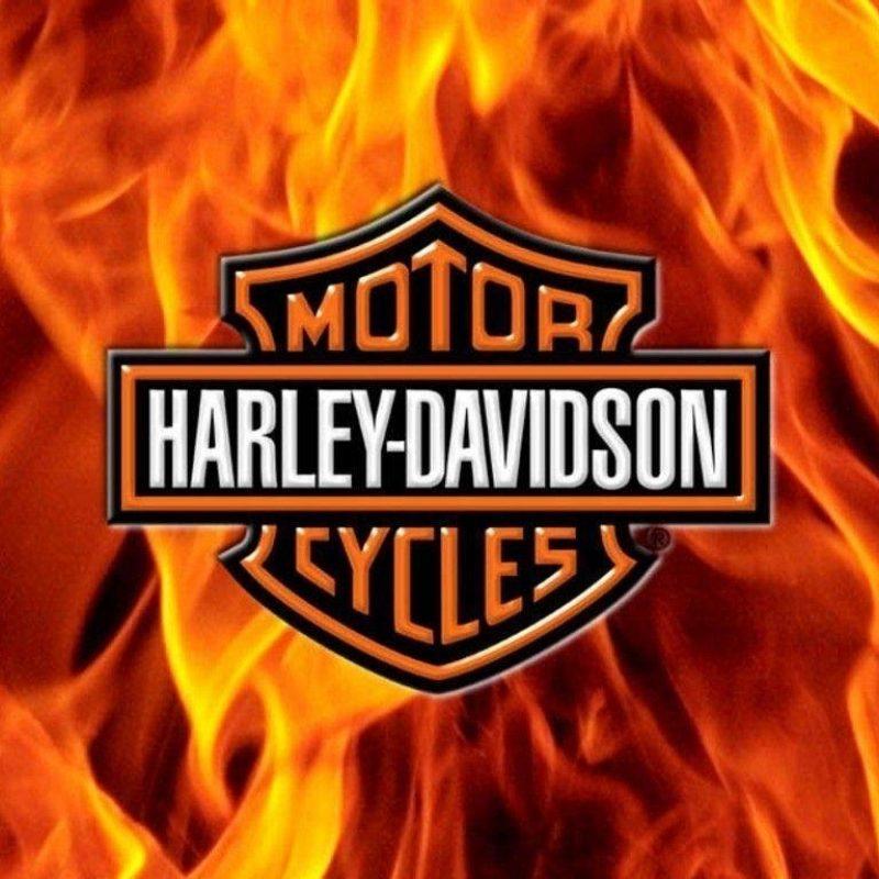 10 Best Free Harley Davidson Wallpaper FULL HD 1080p For PC Desktop 2018 free download free harley davidson wallpapers wallpaper cave 1 800x800