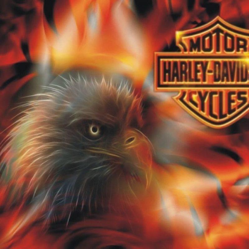 10 Best Free Harley Davidson Wallpaper FULL HD 1080p For PC Desktop 2018 free download free harley davidson wallpapers wallpaper cave adorable 800x800