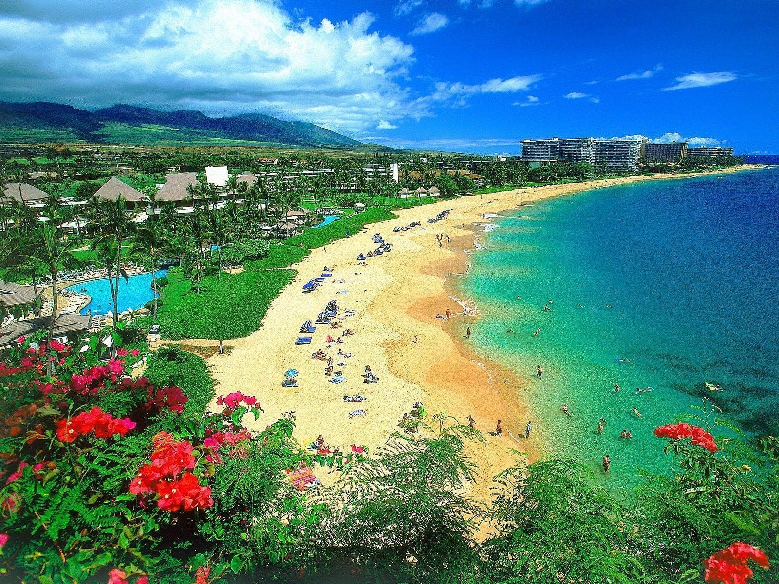 free hawaii desktop wallpapers - wallpaper cave