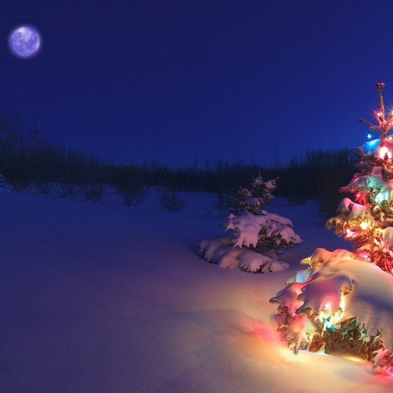 10 New Winter Holiday Wallpaper Hd FULL HD 1920×1080 For PC Desktop 2021 free download free holiday wallpaper background long wallpapers 800x800