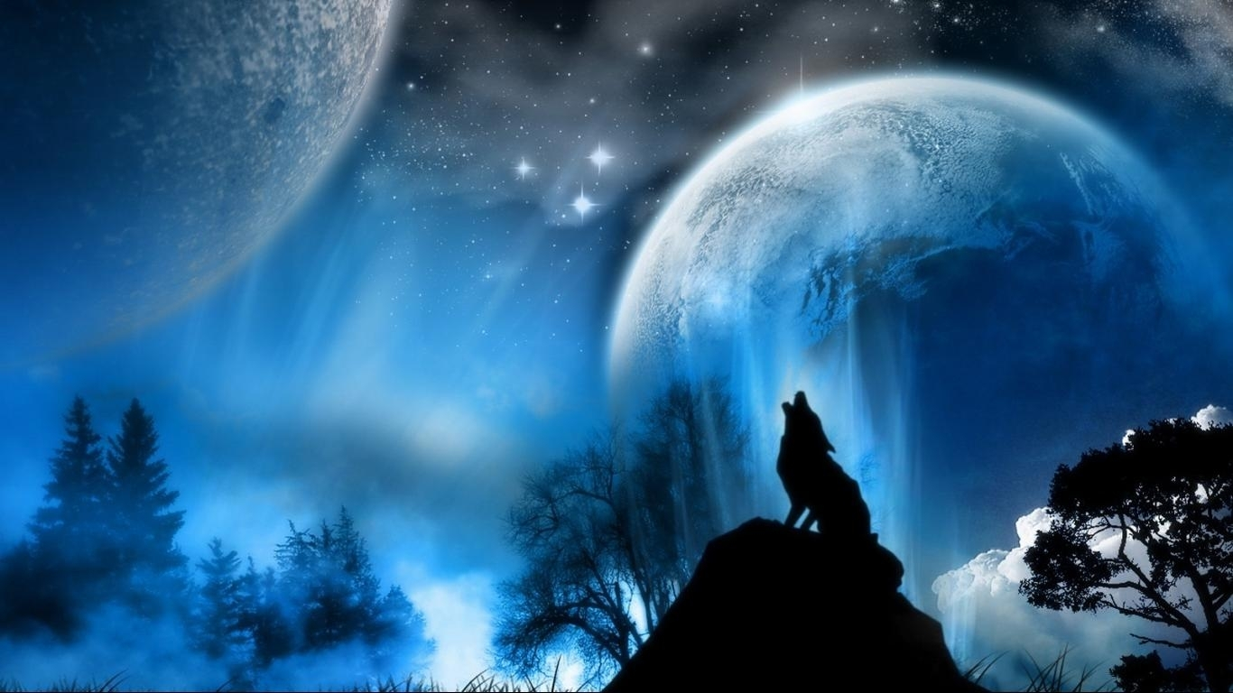 free howling wolf wallpapers background « long wallpapers