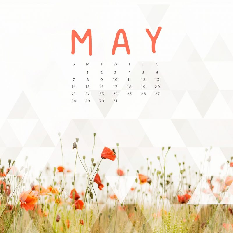 10 New May 2017 Calendar Wallpaper FULL HD 1080p For PC Background 2021 free download free may 2017 calendar for desktop ipad and iphone kalender 800x800