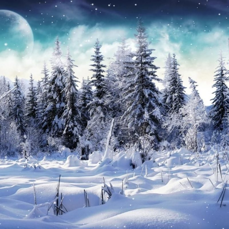 10 New Winter Wonderland Screensavers Free FULL HD 1080p For PC Desktop 2018 free download free microsoft screensavers winter scene download cold winter 2 800x800
