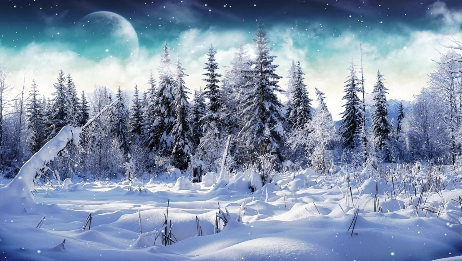 free microsoft screensavers winter scene | download cold winter