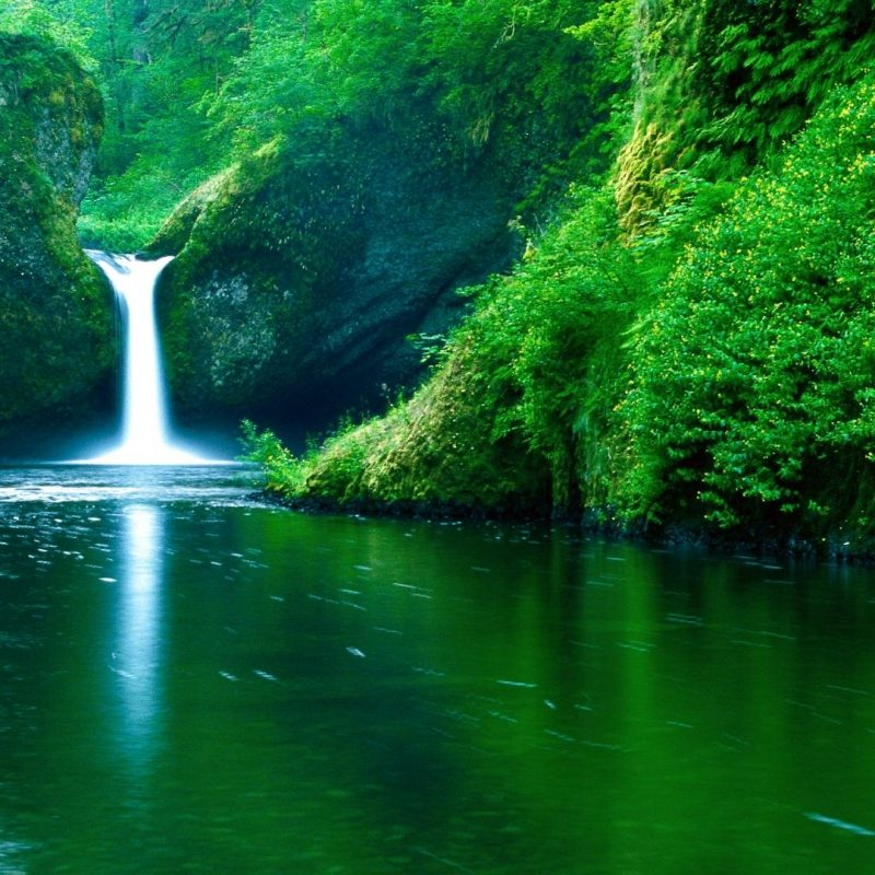 10 Top Nature Desktop Wallpaper 1920X1080 FULL HD 1080p For PC Background 2018 free download free nature wallpaper 1080p long wallpapers 2 800x800