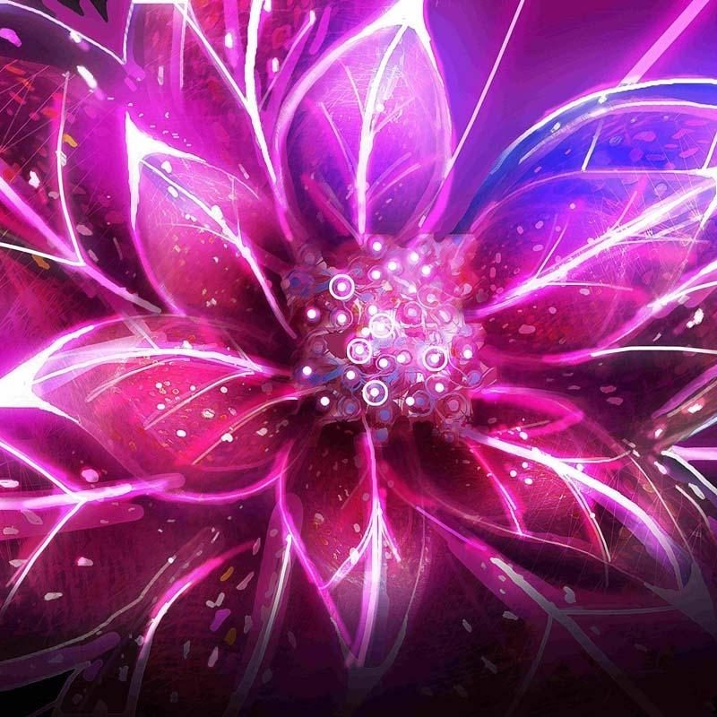 10 Latest Neon Pink Wall Paper FULL HD 1080p For PC Desktop 2021 free download %name