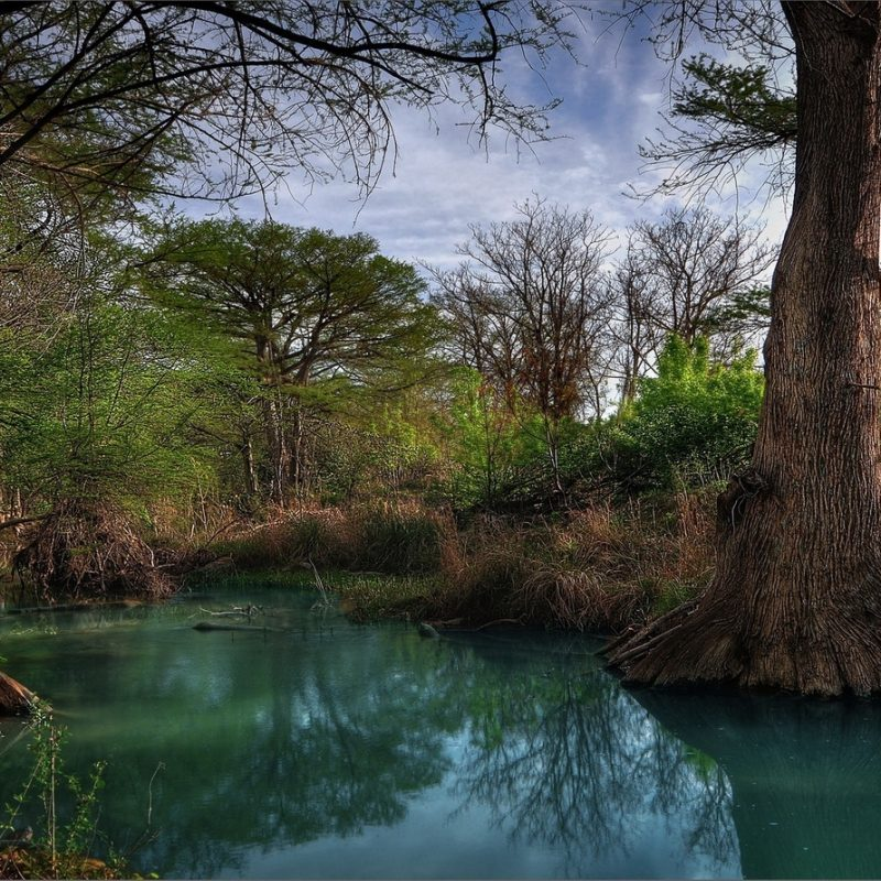10 New Texas Hill Country Wallpaper FULL HD 1080p For PC Desktop 2020 free download free new country wallpaper 800x800