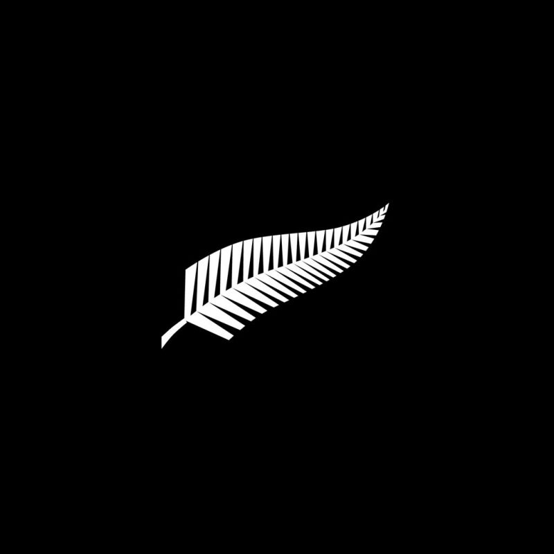 10 Most Popular New Zealand All Blacks Wallpapers FULL HD 1080p For PC Background 2020 free download free new zealand all black rugby hd backgrounds pixelstalk 800x800